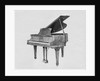 Display of Exquisite Piano by Corbis