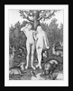 Adam and Eve in Garden of Eden by Corbis