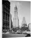 Woolworth Building by Corbis