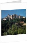 View of Ameglia by Corbis