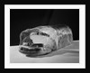 Bread Wrapped in Cellophane by Corbis