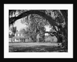 Exterior View of an Old Southern Home by Corbis