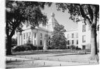 Florida State Capital by Corbis
