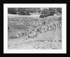 Tour of a Ruined Amphitheater by Corbis