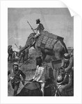 Elephant Battery at Action in Burma by Corbis