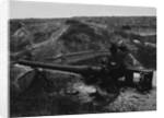 Damaged Turkish Artillery at Dardanelles, 1915 by Corbis
