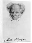 Arthur Schopenhauer by Corbis