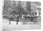 Horse Drawn Carriage by Corbis