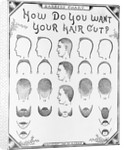 How Do You Want Your Hair Cut? by A. J. Cole