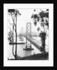 San Francisco Oakland Bay Bridge by Corbis