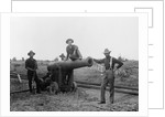 American Soldiers and Cannon During Philippine Insurrection by Corbis