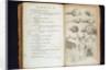 Systema Naturae. 1756 by Corbis