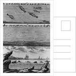 Engraving of Cod Fishing by Corbis