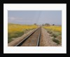 Railroad Tracks by Corbis