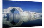 Dorian Bay Iceberg by Corbis