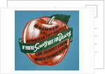 If You're Screwy Vote for Dewey Postcard by Corbis
