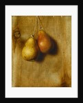 Hanging Pears by Stanley S. David