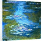 Nympheas by Claude Monet
