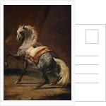 Dappled Grey Horse by Theodore Gericault