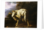 A Ram in a Wooded Landscape Attributed to Jan Baptist Weenix by Corbis
