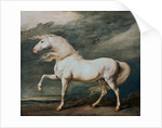 Adonis, King George III's Favorite Charger by James Ward