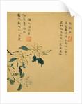 Flowers, from an Album of Ten Leaves (I.) by Zhou Xianji