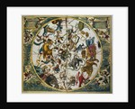 Celestial Planisphere Showing the Signs of the Zodiac from The Celestial Atlas by Andreas Cellarius