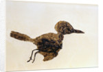 Fossil of Small Bird from Messel Site by Corbis