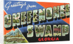 Greeting Card from Okefenokee Swamp by Corbis