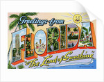 """Greetings from Florida, """"The Land of Sunshine"""" Postcard by Corbis"""