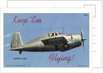 World War II Fighter by Corbis