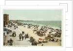 Along the Shore, Venice, California Postcard by Corbis