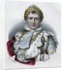 Napoleon by Corbis