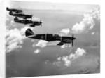 "Curtiss P-40E ""Warhawks"" in Flight by Corbis"