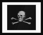 Skull and Crossbones by Corbis