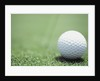 Golf Ball Sitting on the Green by Corbis