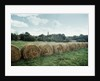 Bales of Hay in a Field by Corbis