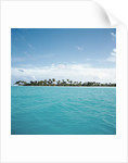 Shallow Water Near Tropical Island by Corbis
