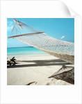 Hammock at the Beach by Corbis