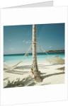 Hammocks Tied to a Palm Tree by Corbis