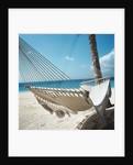 Hammock on a Beach by Corbis