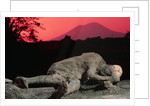 Cast of Pompeiian Victim of Mount Vesuvius by Corbis