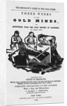 Emigrant's Guide to Gold Mines by Corbis