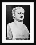 Bust of Roman Ruler Titus by Corbis