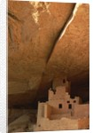 Cliff and Cliff Palace by Corbis