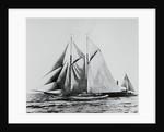 America Racing Yacht on the Sea by Corbis
