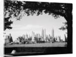 New York City Skyline from Governor's Island by Corbis