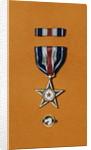 Army Silver Star by Corbis