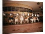 Milking Machine by Corbis