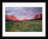 Glacier National Park by Corbis